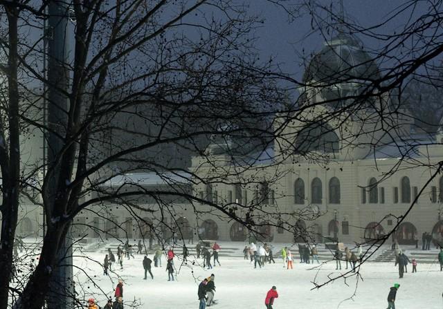 פארק החלקה על הקרח
