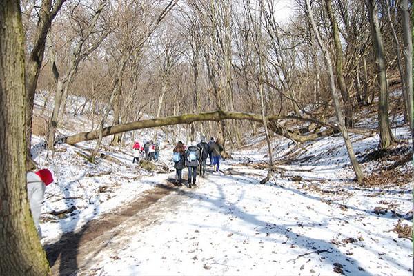 שמורת הטבע נורמפה בחורף