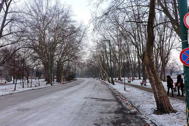 הפארק העירוני בחורף